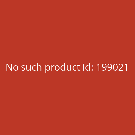 Thommen Sailboards WINDSURFER
